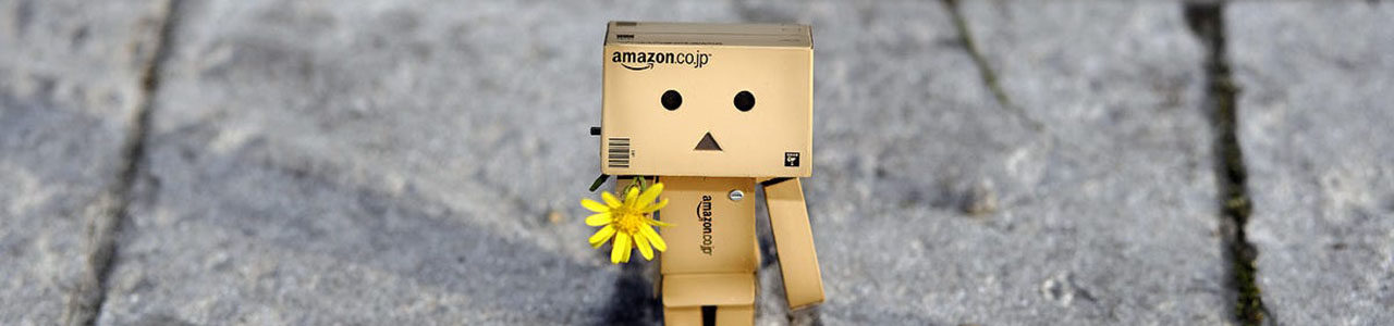 Cardboard Danbo – best pictures from his life